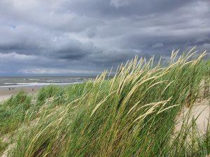 Strand Dünen Wolken